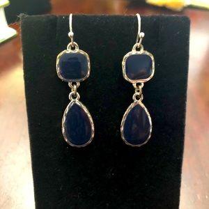 Navy Blue & Silver Earrings